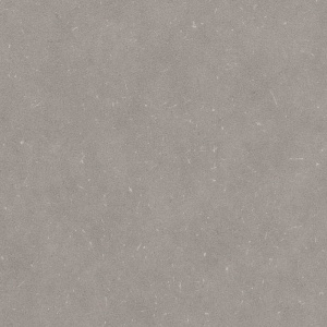 Acoustic PLR022CACT Silver Grey