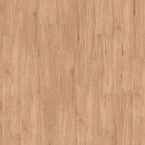 537237 Дуб Песочный