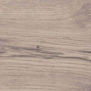 526711 Дуб Альпийский Серый