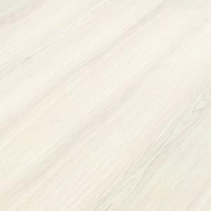 536238 Дуб Белый